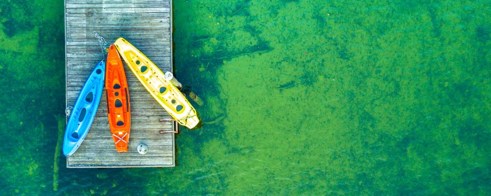 Three coloured kayaks on a pontoon surrounded by green water