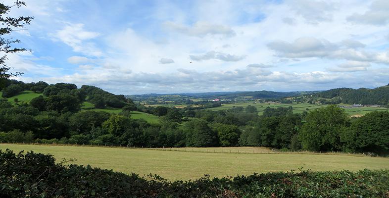 Rural entrepreneurship in Wales